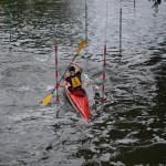 TMK Rehbrücke 2015 - Slalom Calvin